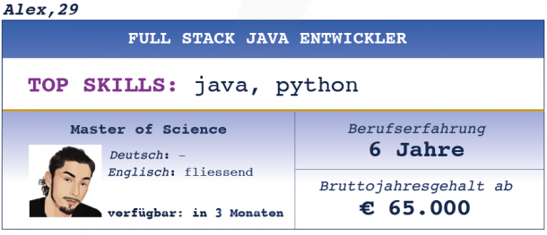 Full Stack Java Entwickler