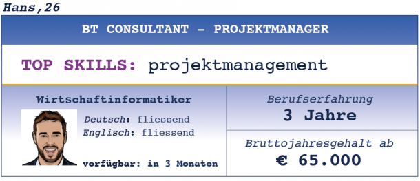 BT Consultant - Projektmanager