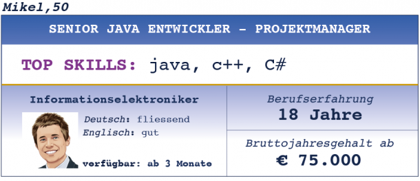 Senior Java Entwickler - Projektmanager