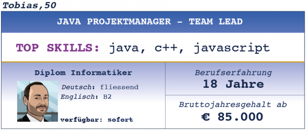 Java Projektmanager Team Lead